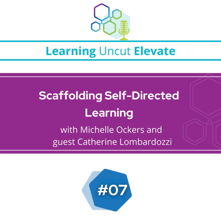 Elevate 07: Scaffolding Self-Directed Learning - Catherine Lombardozzi
