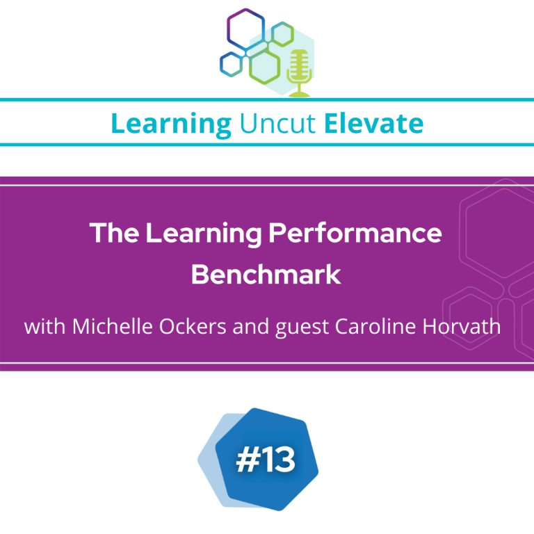 Elevate 13: The Learning Performance Benchmark – Caroline Horvath