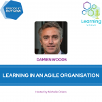 87: Damien Woods – Learning in an Agile Organisation