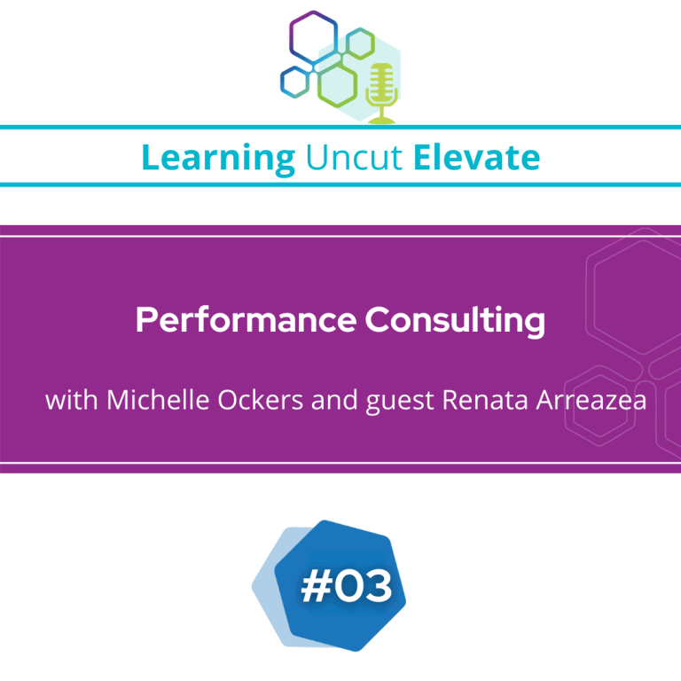 Elevate 03: Performance Consulting